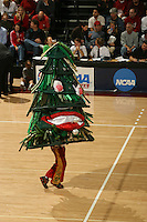 3 December 2005: The Stanford Tree during Stanford's 3-1 loss to Santa Clara University at Maples Pavilion in Stanford, CA.