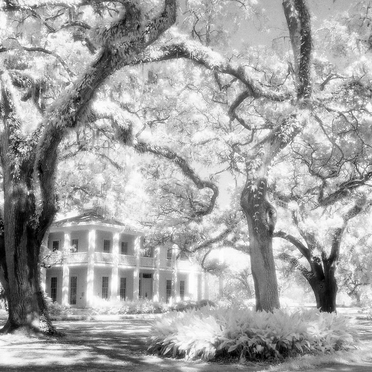Eden plantation  house in Black and white infrared. a florida state park.