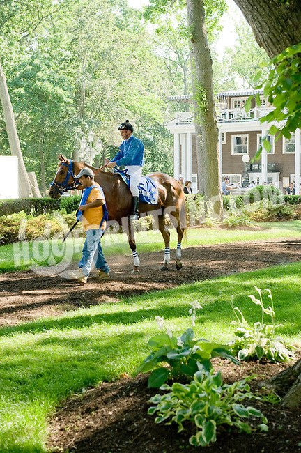 Joyfull Warrior before The Beautiful Day Stakes at Delaware Park on 5/31/12