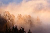 Winter sunset and mist, Homer, Alaska