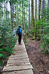 The bog walk at the Strathcona Park Lodge.