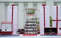 The Cartier Queens Cup on display during the Cartier Queens Cup Final match between King Power Foxes and Dubai Polo Team at the Guards Polo Club, Smith's Lawn, Windsor, England on 14 June 2015. Photo by Andy Rowland.