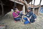 Bishnu Acharya (right), a community mobilizer for the ACT Alliance, talks with Sita Acharya in Adamtar, a village in the Dhading District of Nepal. Dan Church Aid, a member of the ACT Alliance, has provided food, shelter, livelihood, winterization assistance and a variety of other support to villagers here in the wake of a devastating 2015 earthquake.