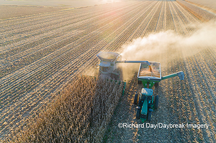 63801-12919 Harvesting corn and unloading into grain cart in fall-aerial  Marion Co. IL