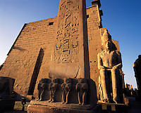 Wide-angle shot of inscribed obelisk and statue in early morning light at entrance to Luxor temple, Egyp
