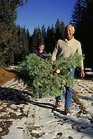 couple carrying cut Christmas tree in forest with snow on the ground. mature couple. California, forest.