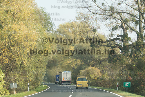 Cars go on a road under trees in the fog in Western Hungary (about 200 kilometres west of capital city Budapest), Hungary on Oct. 19, 2017. ATTILA VOLGYI