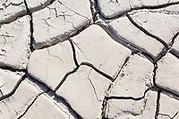 ESP, Spanien, Andalusien, Provinz Cádiz, bei Zahara de la Sierra: Trockenheit, Duerre, ausgetrockneter Stausee | ESP, Spain, Andalusia, Province Cádiz, near Zahara de la Sierra: drought, dryness, desiccated reservoir