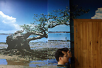 A mangrove tree depicted in a wallpaper in a conservation education center in Zhanjiang, Guangdong Province. Over the past century, the world has lost over 50% of its coastal mangroves. They have been cleared mainly to make way for commercial shrimp and fish farms. The unique trees which live in salt water are valued for the ability to protect shorelines and are home to a diverse array of flora and fauna. 2010