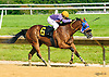 Singing My Way winning at Delaware Park on 6/15/16