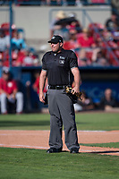 Home plate umpire Bryan Van Vranken during a Northwest League game between the Vancouver Canadians and the Spokane Indians at Avista Stadium on September 2, 2018 in Spokane, Washington. The Spokane Indians defeated the Vancouver Canadians by a score of 3-1. (Zachary Lucy/Four Seam Images)