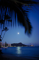 Diamond head with full moon and palm swaying, Oahu