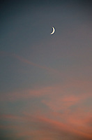 Crescent Moon and Pink Clouds, Castine, Maine, US
