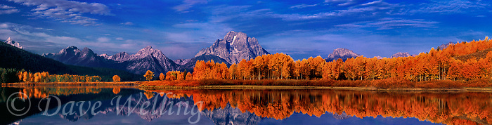 937000010 panoramic view of mount moran and the tetons frame fall colored aspens lining the snake river at the oxbow bend overlook in grand tetons national park wyoming