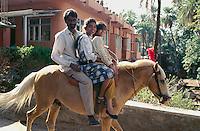 Indien, Mount Abu (Rajasthan), Kinder auf Leihpferd