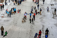 Linwood Fiedler gives high-fives as he runs down Cordova Street in downtown Anchorage during the Ceremonial Start of the 2016 Iditarod in Anchorage, Alaska.  March 05, 2016