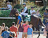 Craftsman before The Kent Stakes (gr 3) at Delaware Park on 9/20/14