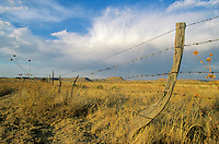 Barbed wire fence and rainbow on the Hitching Post Ranch, Kenton, Cimarron County, Oklahoma, AGPix_0173 .