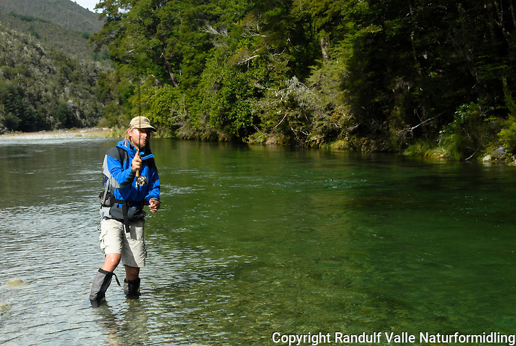 Fluefisker i Goulter River, Mount Richmond Forest park, New Zealand. ---- Fly fishing in Goulter River, Mount Richmond Forest park, New Zealand.