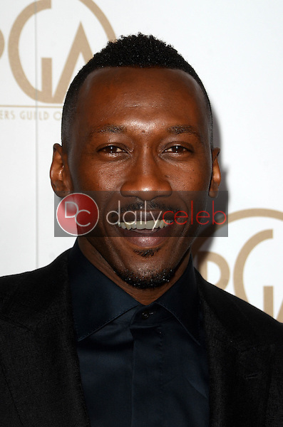 Mahershala Ali<br /> at the 2017 Producers Guild Awards, Beverly Hilton Hotel, Beverly Hills, CA 01-28-17<br /> David Edwards/DailyCeleb.com 818-249-4998