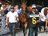 Separationofpowers (no. 6), ridden by Jose Ortiz and trained by Chad Brown, wins the 93rd running of the grade 1 Test Stakes for three year olds on August 04, 2018 at Saratoga Race Course in Saratoga Springs, New York. (Bob Mayberger/Eclipse Sportswire)