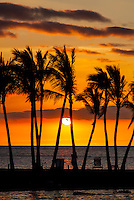 A woman relaxes against a palm tree at the beach while watching a brilliant orange sunset, Waikoloa, Big Island of Hawai'i.