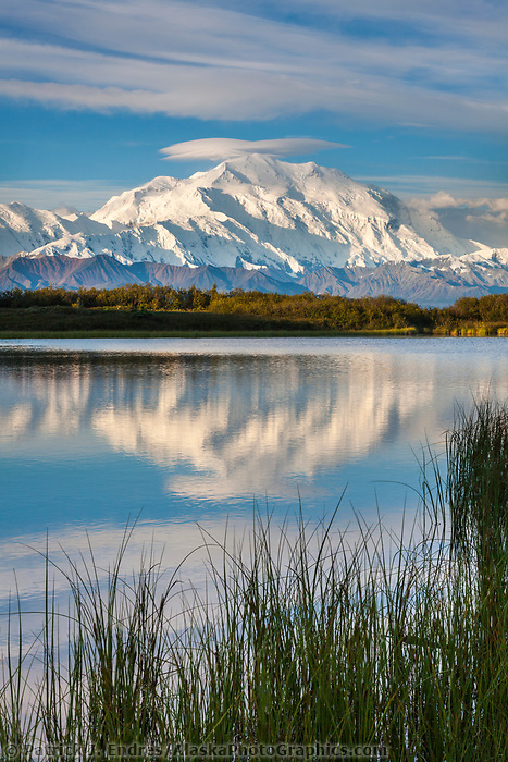 Denali,  and reflection pond, at the west end of Denali National Park, Interior, Alaska.