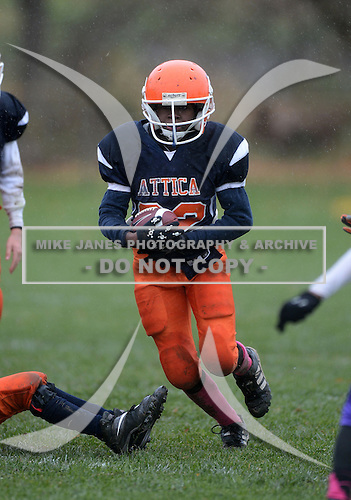 Attica Blue Devils Youth Football against the Albion Purple Eagles at Attica Youth Athletics Field on October 26, 2013 in Attica, New York.  (Copyright Mike Janes Photography)