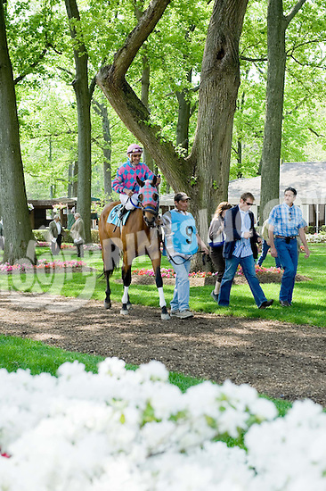paddock at Delaware Park on 5/13/09