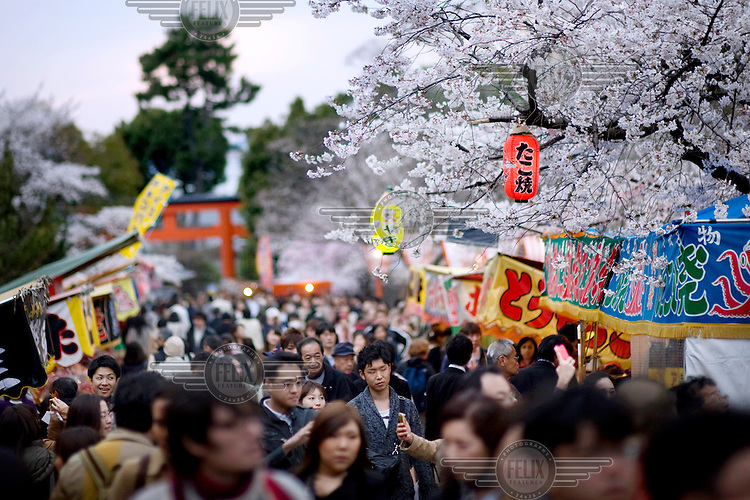Crowds of visitors at Maruyama Park throng a path lined with paper lanterns and cherry blossom trees during a sakura festival (cherry blossom celebration). /Felix Features