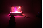 PIERRE HUYGHE<br /> <br /> L'Exp&eacute;dition scintillante, 2002, Acte 2, Untitled (Light Box)<br /> Syst&egrave;me de fum&eacute;e et de lumi&egrave;re, son, 200 x 190 x 155 cm<br /> chien Human (2011-2013)<br /> Lieu : Centre Pompidou<br /> Ville : Paris<br /> Le : 24/11/2013