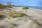 Port Crescent State Park, Michigan<br /> Dune grasses on the shore of Lake Huron