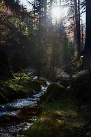 Italien, Suedtirol (Trentino - Alto Adige), St. Martin in Thurn - Ortsteil und Bergsteigerdorf Campill im Campilltal: am Campillbach | Italy, South Tyrol (Trentino - Alto Adige), Campill Valley (Val di Longiarù): mountain village Campill (Longiarù) - Rio di Longiariù