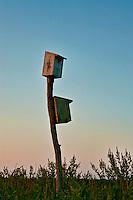 Birdhouses in salt marsh.