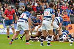 BLENHEIM, NEW ZEALAND - OCTOBER 19: Mitre 10 Cup Tasman Mako v Auckland at Lansdowne Park, Blenheim, New Zealand. Saturday 19th October 2019. (Photos by Barry Whitnall/Shuttersport Limited)