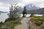 Hiking Trail along Lago Grey in Torres del Paine National Park in Patagonia Chile