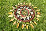 Pattern rings autumn leaves on grass, National arboretum, Westonbirt arboretum, Gloucestershire, England, UK
