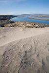 Hanford Reach National Monument, Wahluke Slope, Columbia River, White Bluffs, sand dunes, Columbia Basin, eastern Washington, Washington State, Pacific Northwest, USA, North America,