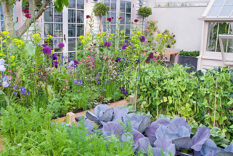 Garden Design Vegetables And Flowers interesting garden design vegetables and flowers spicysmelling in
