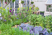Beautiful vegetable and flower garden, Vegetables, carrots, peas, cabbages, flowers, ireises, house, patio, greenhouse, in lush growing together intermixed