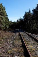 Empty railway track, Vancouver island.Vancouver,British Colombia, Canada