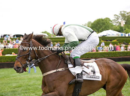 Takemeouttotheballgame and Jimmy McCarthy win for fun at the Queens Cup.