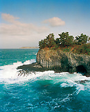 JAPAN, Kyushu, cliffs and trees nest to the Sea of Japan