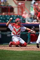 Reading Fightin Phils catcher Chace Numata (50) throws the ball back to the pitcher during a game against the Erie SeaWolves on May 18, 2017 at UPMC Park in Erie, Pennsylvania.  Reading defeated Erie 8-3.  (Mike Janes/Four Seam Images)