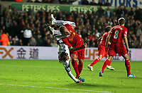 Pictured L-R: Tough challenge, Michu of Swansea is brought upside down by Martin Skrtel of Liverpool. Monday 16 September 2013<br />