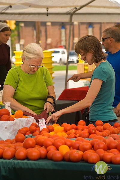 Williamsport Growers Market. Tomatos.