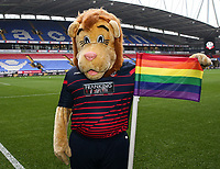 Bolton Wanderers' mascot, Lofty the Lion, supporting Stonewall's Rainbow campaign in support of LGBT equality<br /> <br /> Photographer Andrew Kearns/CameraSport<br /> <br /> The EFL Sky Bet Championship - Bolton Wanderers v Wigan Athletic - Saturday 1st December 2018 - University of Bolton Stadium - Bolton<br /> <br /> World Copyright © 2018 CameraSport. All rights reserved. 43 Linden Ave. Countesthorpe. Leicester. England. LE8 5PG - Tel: +44 (0) 116 277 4147 - admin@camerasport.com - www.camerasport.com