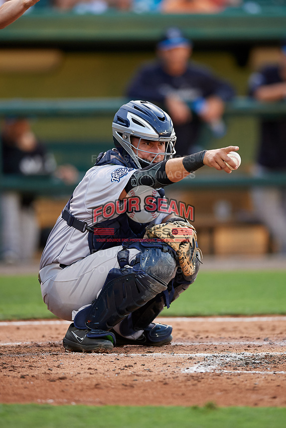 Tampa Tarpons catcher Francisco Diaz (17) points to an umpire on a check swing call during a game against the Lakeland Flying Tigers on April 5, 2018 at Publix Field at Joker Marchant Stadium in Lakeland, Florida.  Tampa defeated Lakeland 4-2.  (Mike Janes/Four Seam Images)