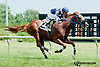 One Sunday winning at Delaware Park on 7/15/13