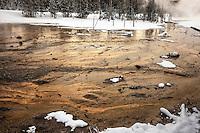 Heat-loving microorganisms create tapestries of color in the geothermal areas of Lower Geyser Basin.